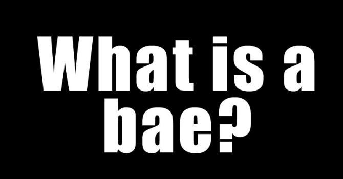 1. Bae