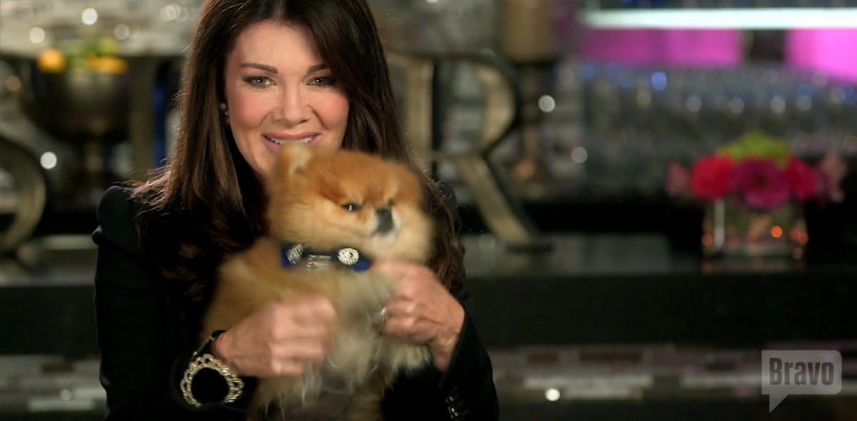Lisa Vanderpump dog