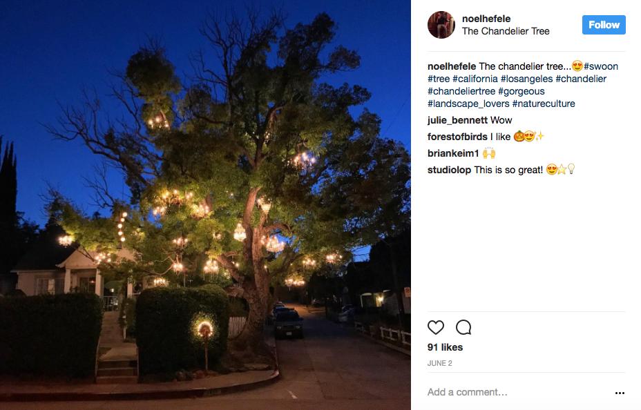 Chandelier Tree LA