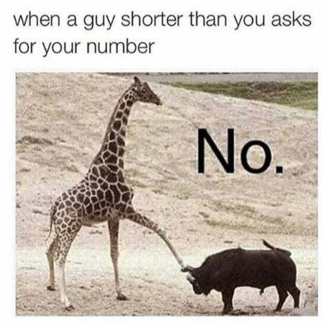 When A Short Guy Asks For Your Number